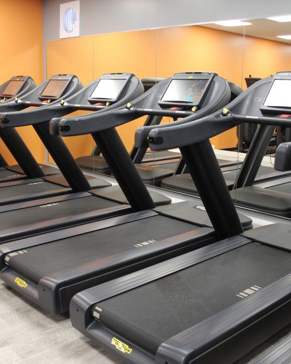 Alsager gym